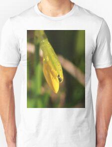 Raindrops on miniature daffodil Unisex T-Shirt