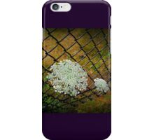 Through the Fence  iPhone Case/Skin