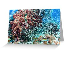 Can't See the Reef for the Fish Greeting Card
