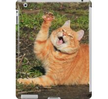 Ginger cat playing iPad Case/Skin