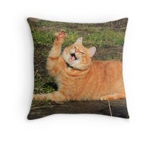 Ginger cat playing Throw Pillow