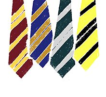 House ties Photographic Print