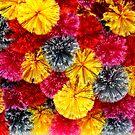 Warm colors by annalisa bianchetti