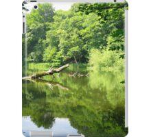 Through the Trees iPad Case/Skin