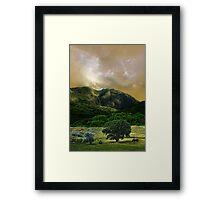 3354 Framed Print