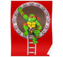 TURTLES IN TIME - RAPHAEL Poster