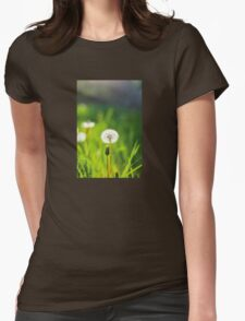Make a Wish Womens Fitted T-Shirt