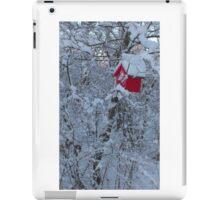bird house in winter iPad Case/Skin