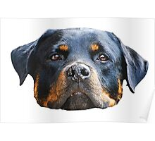 The Rottweiler Poster