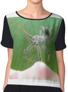 The Assasin Insect Chiffon Top