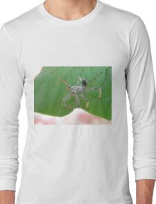 The Assasin Insect Long Sleeve T-Shirt