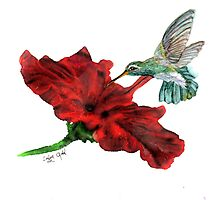 Hungry Hummingbird by Linda Ginn Art
