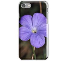 Flower of perennial or blue flax (Linum narbonense). iPhone Case/Skin