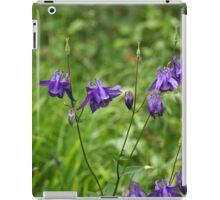 Flowers of European columbine herb (Aquilegia vulgaris). iPad Case/Skin