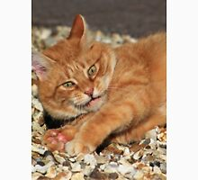 Ginger cat playing with toy mouse Unisex T-Shirt
