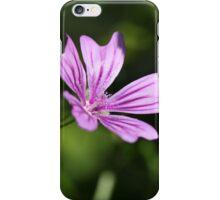Macro photo of a common mallow flower (Malva sylvestris) iPhone Case/Skin