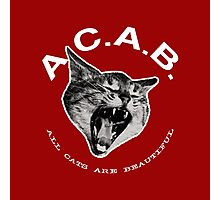 ACAB - All Cats Are Beautiful Photographic Print
