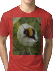 Bee- Have! Tri-blend T-Shirt