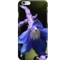 A flower of an alpine delphinium (Delphinium elatum). iPhone Case/Skin
