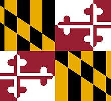 Maryland State Flag by Carolina Swagger