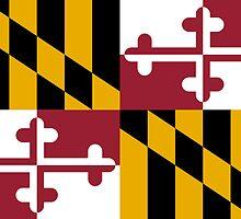 Maryland State Flag by Carolina Swagger