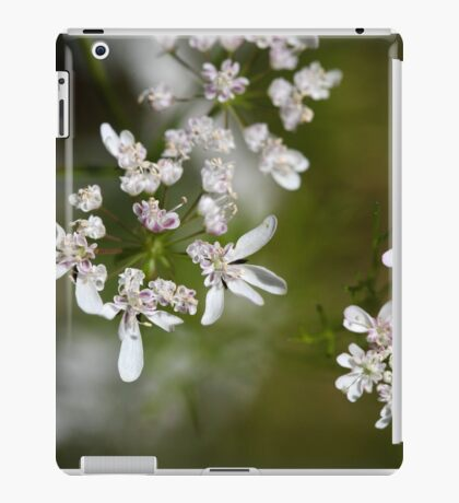 Macro photo of Coriander flowers (Coriandrum sativum). iPad Case/Skin