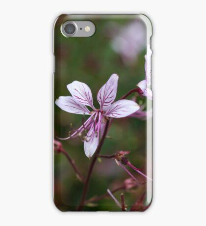 Flower of a burning bush (Dictamnus albus) iPhone Case/Skin