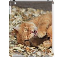 Ginger cat playing with toy mouse iPad Case/Skin