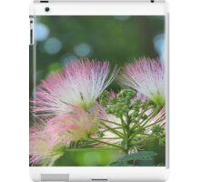 Mimosa Blossoms iPad Case/Skin