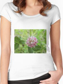 White Clover Women's Fitted Scoop T-Shirt