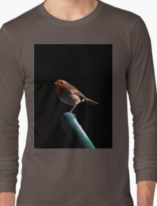 Robin on spade handle Long Sleeve T-Shirt