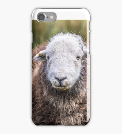 Herdwick sheep iPhone Case/Skin