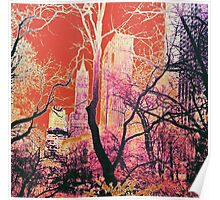 New York Central Park USA Abstract Design Sunset Poster