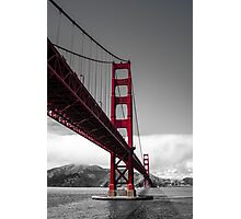 What a View Photographic Print