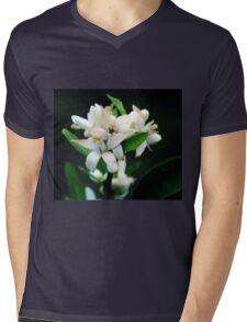 Lemon Blossoms Mens V-Neck T-Shirt
