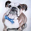 Bulldog by AlanZinn