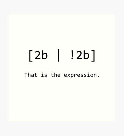"Nerd Humour - RegEx ""2b or not 2b"" pun Art Print"