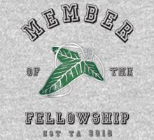 Fellowship by icedtees
