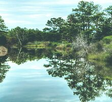 Reflection of Summer: Chesapeake Bay by Kadwell