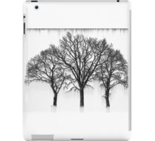 Triplet  iPad Case/Skin