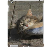 Grey cat playing with toy fish iPad Case/Skin