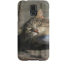 Grey cat playing with toy fish Samsung Galaxy Case/Skin