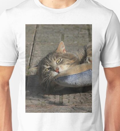 Grey cat playing with toy fish Unisex T-Shirt