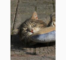 Grey cat playing with toy fish T-Shirt