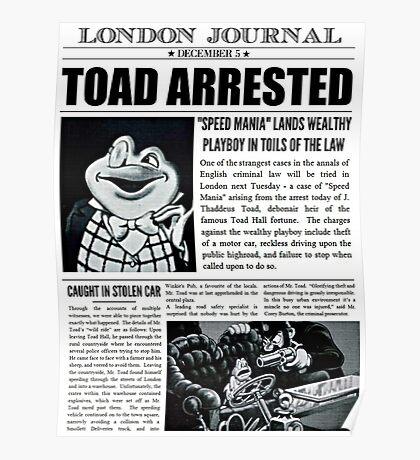 Toad Arrested Newspaper Poster