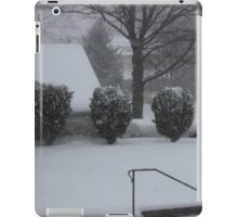 Winter Madness iPad Case/Skin