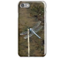 Blue Dragonfly iPhone Case/Skin