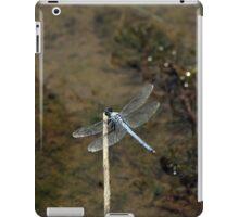 Blue Dragonfly iPad Case/Skin