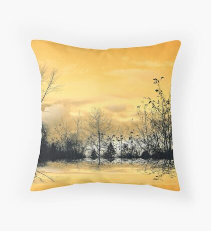 Sky Light ! Throw Pillow