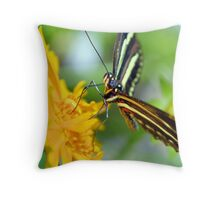 The Zebra Longwing Throw Pillow